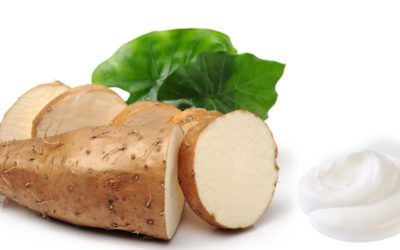 Wild Yam Cream: The Solution for Natural Hormone Balance, Hormone Symptom Relief and More